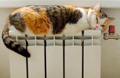 Какие радиаторы отопления выбрать: чугунные или алюминиевые?